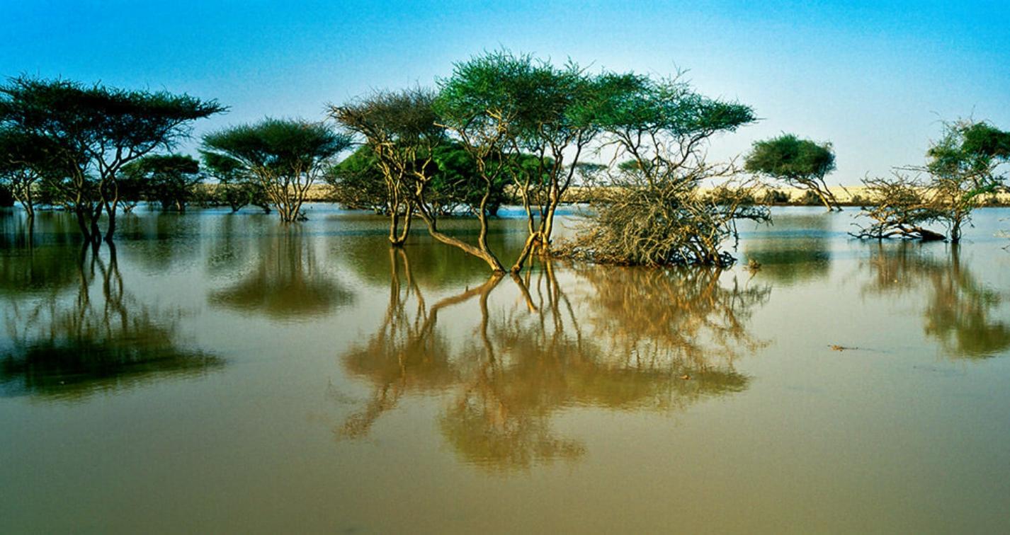 طبیعت قطر